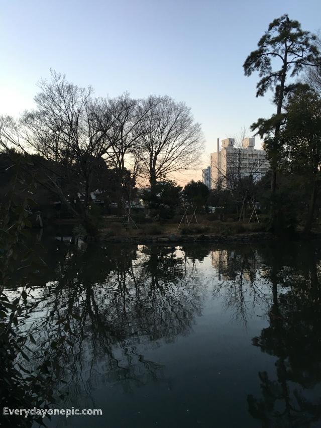 Un petit tour à la fraiche dans Tokyo !