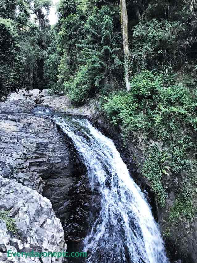 springbrook  chutes d'eau