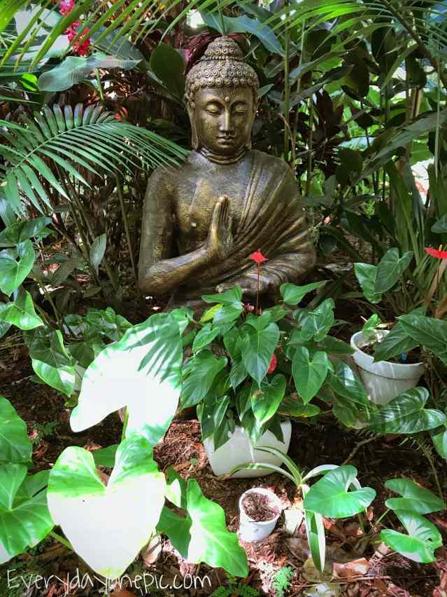 buddha style calm .JPG