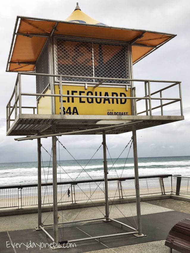 lifeguard surfers paradise